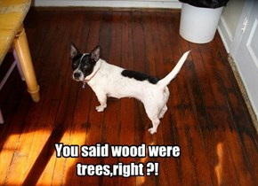 You said wood were trees,right ?!
