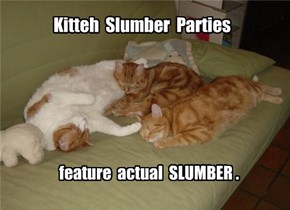 Kitteh Slumber Parties