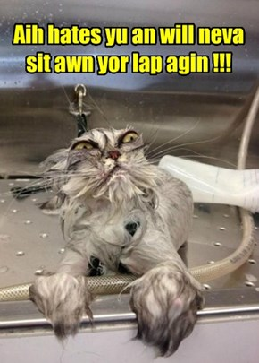 Aih hates yu an will neva sit awn yor lap agin !!!