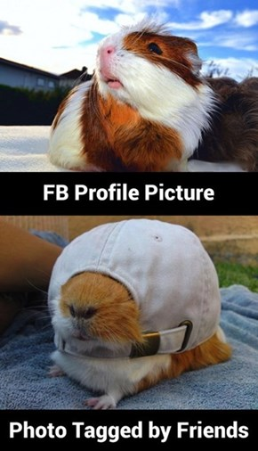 Everyone Always Sees You at Your Worst on Facebook