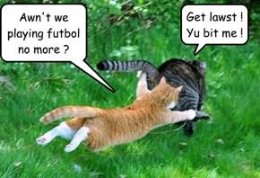Awn't we playing futbol no more ?