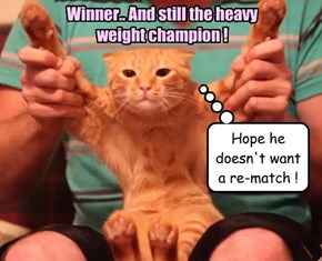 Winner.. And still the heavy weight champion !