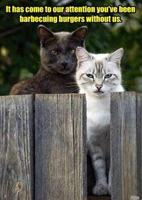"""they're not there to """"hidey-ho"""""""