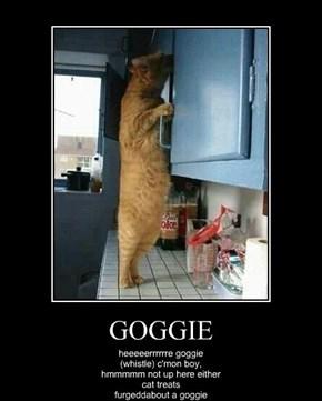 GOGGIE
