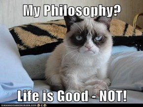 Grumpy Cat's Advice of the Day