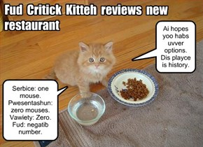Fud Critick Kitteh reviews new restaurant