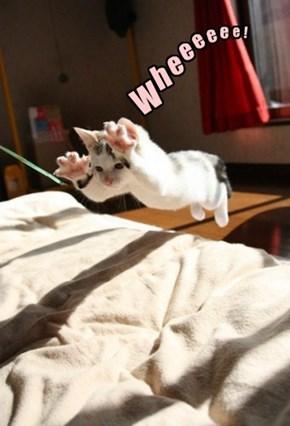 Wheeeeeeeee!