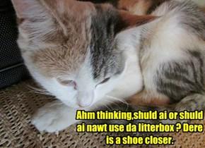 Ahm thinking,shuld ai or shuld ai nawt use da litterbox ? Dere is a shoe closer.