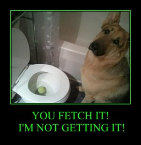 YOU FETCH IT!  I'M NOT GETTING IT!