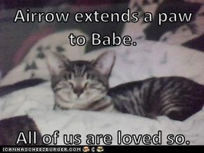 Airrow extends a paw to Babe.  All of us are loved so.