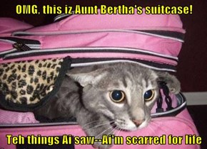 OMG, this iz Aunt Bertha's suitcase!  Teh things Ai saw--Ai'm scarred for life