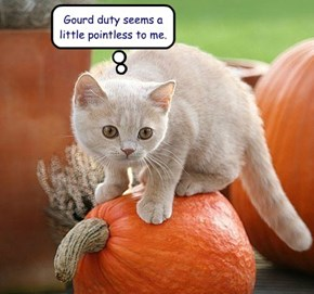 Gourd duty seems a little pointless to me.
