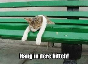 Hang in dere kitteh!