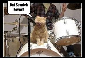 Cat Scratch Fever!!