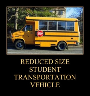 REDUCED SIZE  STUDENT TRANSPORTATION VEHICLE