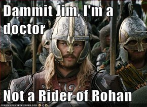 Dammit Jim, I'm a doctor  Not a Rider of Rohan