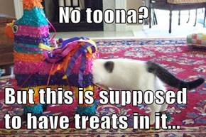 No toona?  But this is supposed to have treats in it...