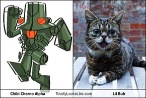 Chibi Cherno Alpha Totally Looks Like Lil Bub