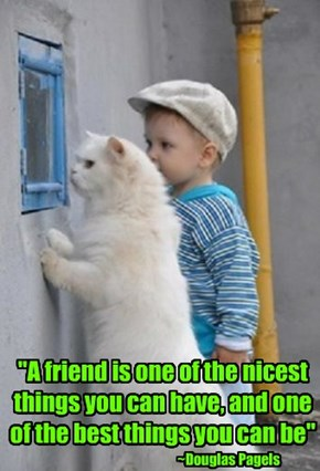 """A friend is one of the nicest things you can have, and one of the best things you can be"""
