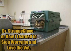 Dr. StrangeGlove -  or How I Learned to Stop Worrying and Love the Vet.