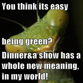 You think its easy being green? Dinner&a show has a whole new meaning, in my world!