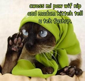 cwoss mi paw wif nip and madam kitteh tell u teh fushur.