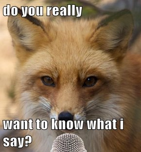 do you really  want to know what i say?