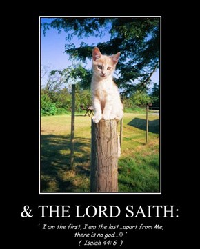 & THE LORD SAITH: