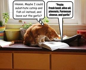 Catnip Pesto?