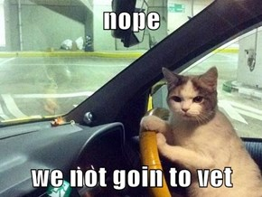 nope  we not goin to vet