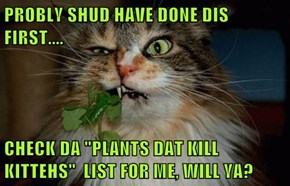 "PROBLY SHUD HAVE DONE DIS FIRST....   CHECK DA ""PLANTS DAT KILL KITTEHS""  LIST FOR ME, WILL YA?"