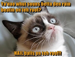 Ya'nao whut souns betta den rain beatin on teh roof?  HAIL balls on teh roof!!