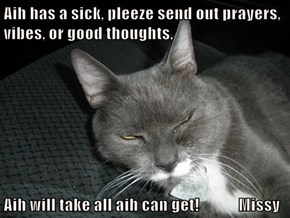 Aih has a sick, pleeze send out prayers, vibes, or good thoughts,   Aih will take all aih can get!            Missy