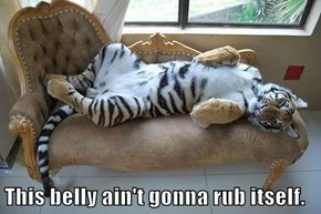 This belly ain't gonna rub itself.