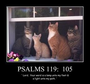 PSALMS 119:  105