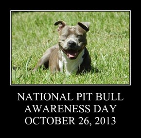 NATIONAL PIT BULL AWARENESS DAY OCTOBER 26, 2013