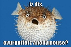 iz dis  ovurpufferz anonymouse?
