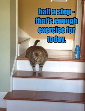 half a step - that's enough exercise for today.