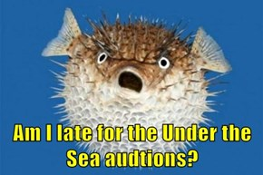Am I late for the Under the Sea audtions?
