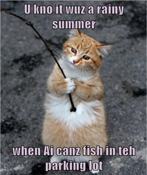 U kno it wuz a rainy summer  when Ai canz fish in teh parking lot