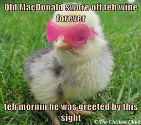 Old MacDonald swore off teh wine forever  teh mornin he was greeted by this sight