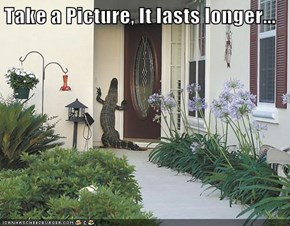 Take a Picture, It lasts longer...