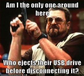 Am I the only one around here  Who ejects their USB drive before disconnecting it?