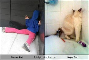 Corner Pat Totally Looks Like Nope Cat