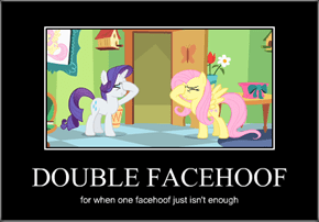 DOUBLE FACEHOOF