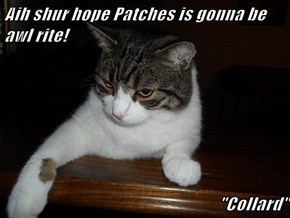 "Aih shur hope Patches is gonna be awl rite!  ""Collard"""