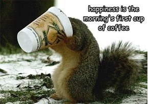 happiness is the morning's first cup of coffee