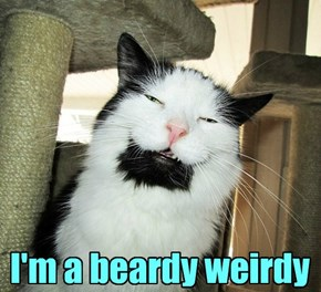I'm a beardy weirdy