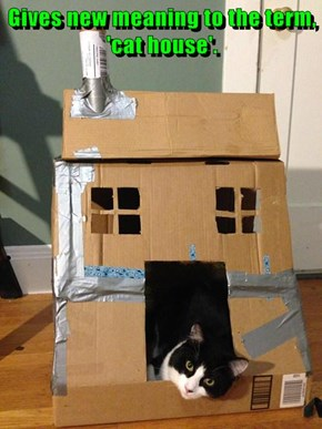 Gives new meaning to the term, 'cat house'.