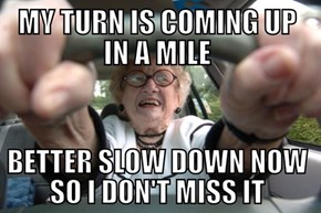 Elderly Driver Logic